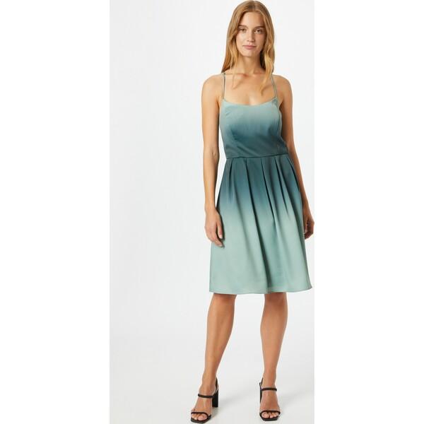 VM Vera Mont Sukienka koktajlowa VMM0150001000001